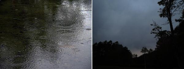 雨ポツポツ